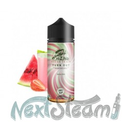 steam train - turn out 24/120ml